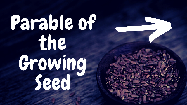 The Parable of the Growing Seed by Jason Royle